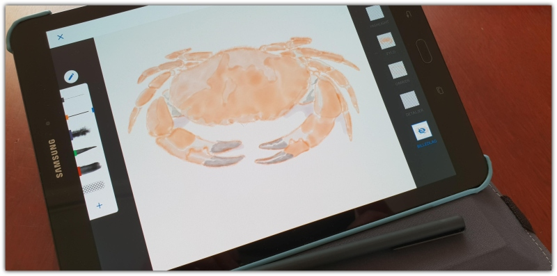 crab_art_on_tablet
